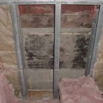Toxic Mold Hidden Behind Wall Resulting in Mold Remediation